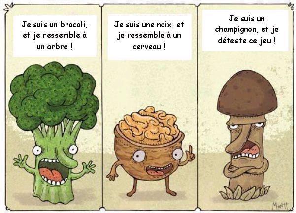"""Résultat de recherche d'images pour """"humour champignon"""""""